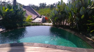 PuriSebaliResort1